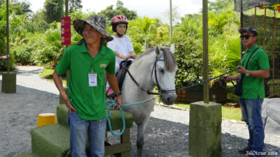 The Horse raiding station where visitors giddy up and ready for a guided pony ride