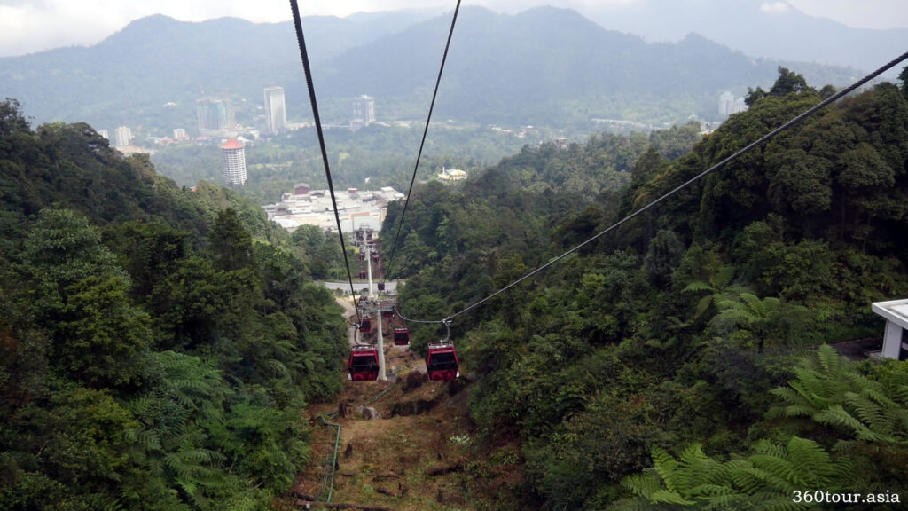 The Awana Skyway cuts through the rainforest