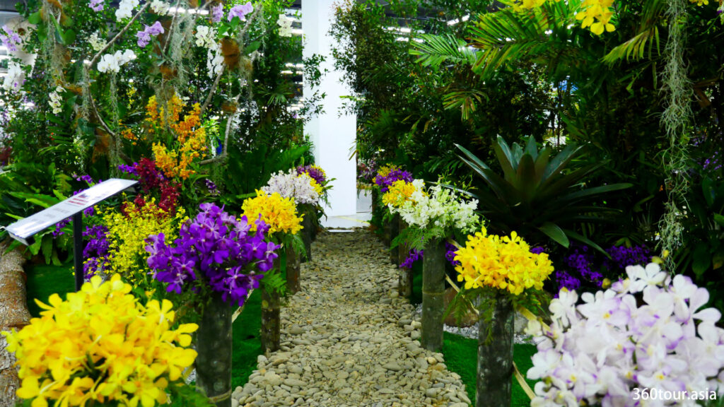 The Orchid Landscape by the Johor Orchid Growers Association, featuring the orchid garden with a stone path.