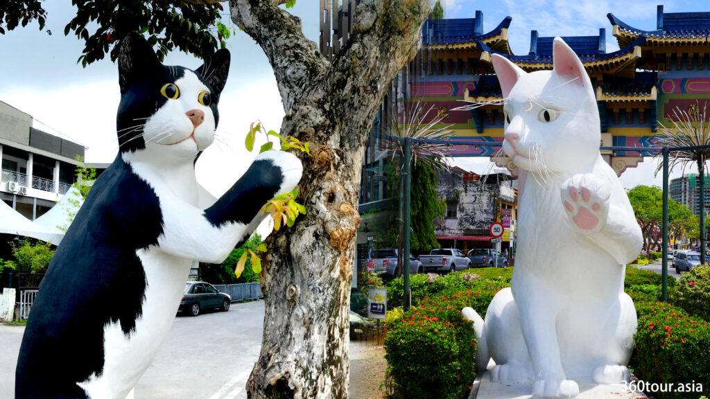 The romance of two cats in Kuching City.